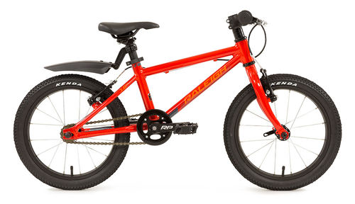 "Raleigh Performance MTB 16"" Childs Bike"